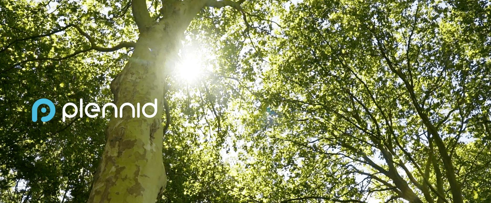 Plennid over de toepassing van Nederlandse bomen in houtbouw